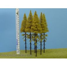 MSC MK204 - Smrekovec opadavý na kmeni, jeseň, 180-220 mm