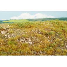 MSC F723 - Trávny porast s vápencovými kameňmi, neskoré leto. Veľkosť kameňov M